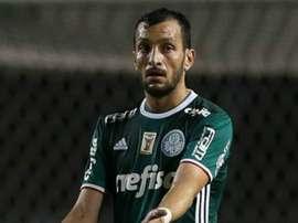 Edu Dracena exalta a grande fase da defesa do Palmeiras. Goal