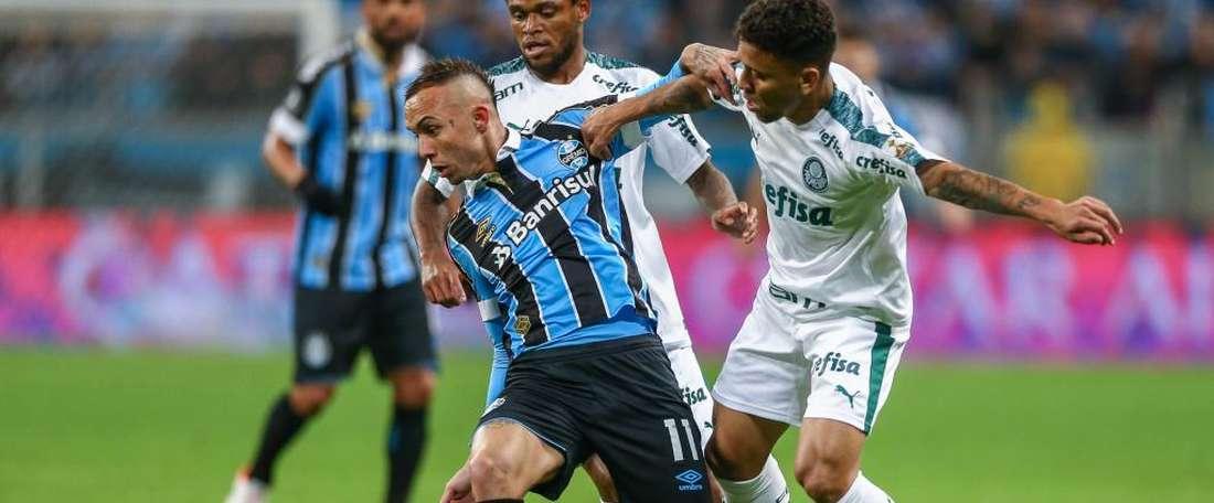 Gremio 0-1 Palmeiras: Scarpa stunner lifts Scolari's men