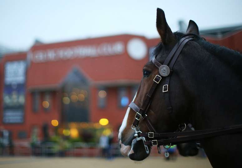 A Celtic fan was arrested for throwing a hamburger at a horse. Goal