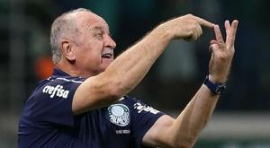 Palmeiras tem início dominante e disputa recorde com Corinthians. Goal