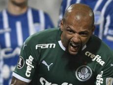 Felipe Melo tem pena reduzida, mas desfalca Palmeiras contra o Goiás. Goal