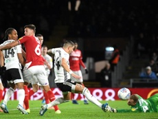 Fulham won 1-0. GOAL