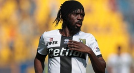 Parma, Gervinho verso il reintegro: prima le scuse ai compagni. Goal