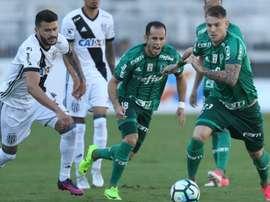 O Palmeiras não tem tido sorte essa época com as lesões. Goal