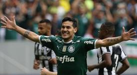 Gustavo Gómez renova com o Palmeiras: vai conseguir jogar o Paulistão?