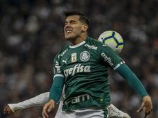 Por que Gómez ainda não renovou com o Palmeiras? EFE