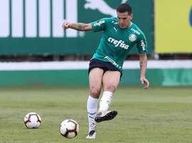 Gustavo Gomez espera uma estreia difícil na Libertadores. Goal