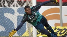 Quem será titular do Flamengo? EFE