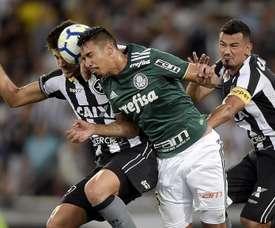 Botafogo 1 x 1 Palmeiras: Verdão sai na frente, mas Bota busca o empate no fim no Engenhão