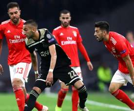 Pizzi: Defeat hard on Benfica