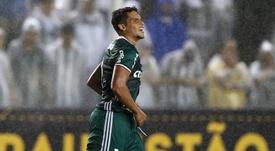 Dores de cabeça para o treinador do Palmeiras. Goal