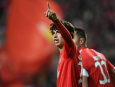 Felipe reckons Joao Felix could double or treble his market price in just 12 months. GOAL