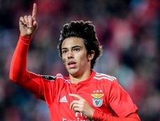 La Juve pensa a Joao Felix. Goal