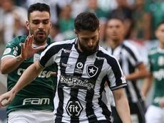 Botafogo quer anular jogo com Palmeiras. Goal