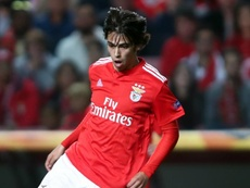 Herrera hails 'intelligent' Joao Felix ahead of Atletico link-up. GOAL