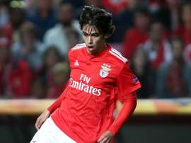 Herrera hails 'intelligent' Joao Felix ahead of Atletico link-up. GOAL