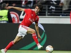 Joao Felix is seemingly set to leave Benfica. GOAL