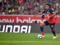 Lille 2-2 Nîmes - Le LOSC patine, les Crocodiles y ont cru. AFP