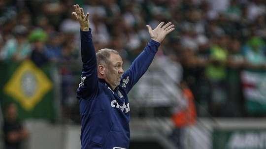 Palmeiras precisa repetir Flamengo de 2009 para ser campeão. Goal