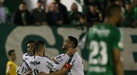 Palmeiras encara maratona de jogos no mês de julho. Goal