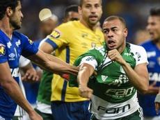 Mayke Léo briga Cruzeiro Palmeiras Copa do Brasil. Goal