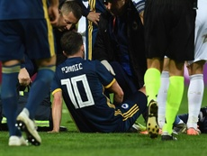 Bosnia confirm Pjanic injury. GOAL