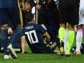 Bosnia confirm Pjanic injury. GOAL
