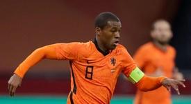 Wijnaldum has mixed emotions after captaining Netherlands in Van Dijk's absence. AFP