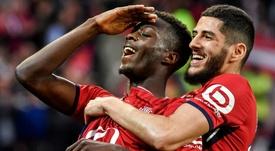Il Lille blinda Pépé. Goal