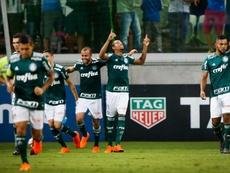 Botafogo e Palmeiras encaram-se nesta segunda-feira. Goal