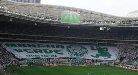 Palmeiras - Allianz Parque. Goal