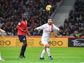 Savanier à Montpellier. Goal