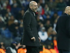 Bosz: I don't think you can call Madrid Champions League favourites