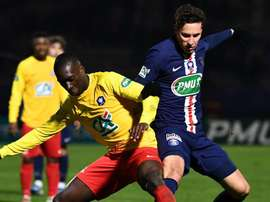 PSG will have to play on an artificial pitch in the next round of the French Cup. GOAL