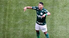 Rony, artilheiro, é mais um trunfo do Palmeiras de Abel Ferreira