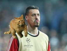 UEFA haven't seen the funny side of Besiktas' feline friend. GOAL