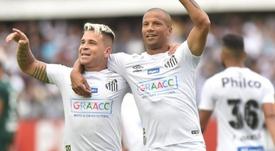Santos pode superar sua maior sequência de vitórias no Brasileirão de pontos corridos