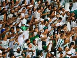 Palmeiras Barcelona. Goal
