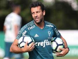 O técnico interno do Palmeiras: Alberto Valentim. Goal