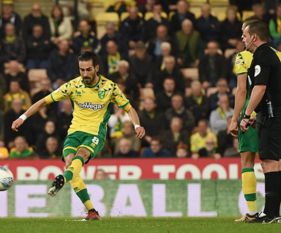 Norwich City 2 Sheffield Wednesday 2: Late Vrancic stunner secures point for Canaries.