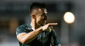 Ataque do Palmeiras espelha movimentos do Liverpool. GOAL