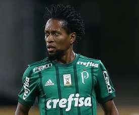 O lendário canhoto: Zé Roberto. Goal