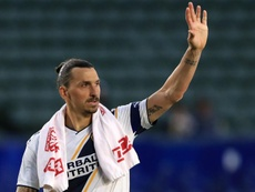 Milan manager Pioli likes Ibrahimovic, but is not ready to buy him yet. GOAL