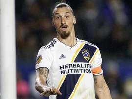 L'amica di Ibrahimovic rivela la passione dello svedese per il Napoli. Goal