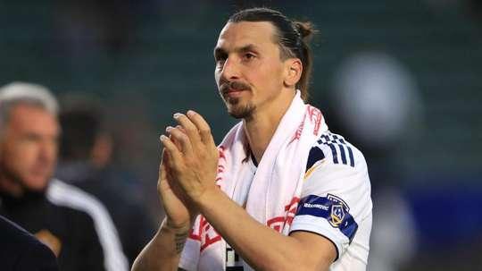 Bologna, Ibrahimovic non è impossibile: servono 8 milioni. Goal