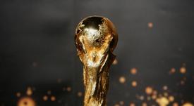 Regno Unito e Irlanda vogliono ospitare la Coppa. AFP
