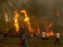 Los incendios siguen azotando Galicia. EFE