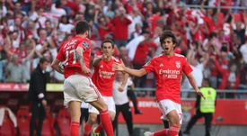 Benfica - Santa Clara: onzes iniciais confirmados. Twitter/SLBenfica.