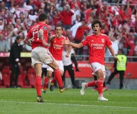 Le rêve de l'Atlético. Twitter/SLBenfica