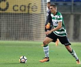 Palhinha prolongou a sua ligação ao Sporting CP. Twitter